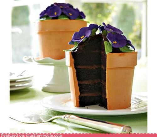 amazing,cake,epicute,flower pot,fondant,gorgeous,magic