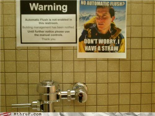 bathroom Memes toilet - 4754091776