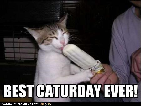 best caption captioned cat Caturday ever happy licking popsicle - 4754709248
