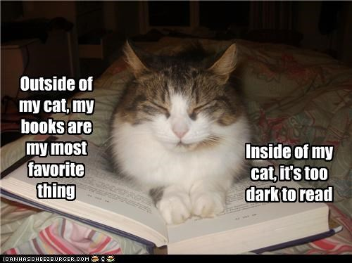 Outside of my cat, my books are my most favorite thing Inside of my cat, it's too dark to read
