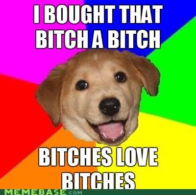advice dog dogs redundant the b word - 4755655168