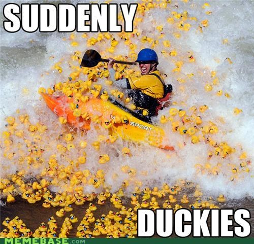 duckies,Memes,rafting,suddenly,thousands