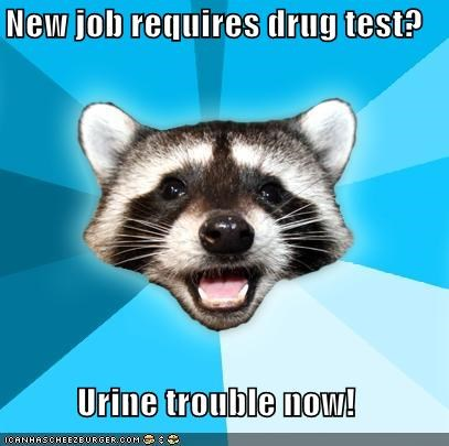 drugs,job,Lame Pun Coon,piss,trouble,urine