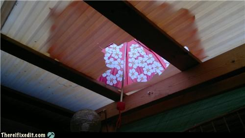 cute holding it up umbrella waterproof - 4757165568