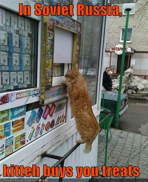 buys caption captioned cat for you reversal role role reversal Soviet Russia tabby treats - 4757260032