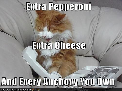 Extra Pepperoni Extra Cheese And Every Anchovy You Own I Can Has