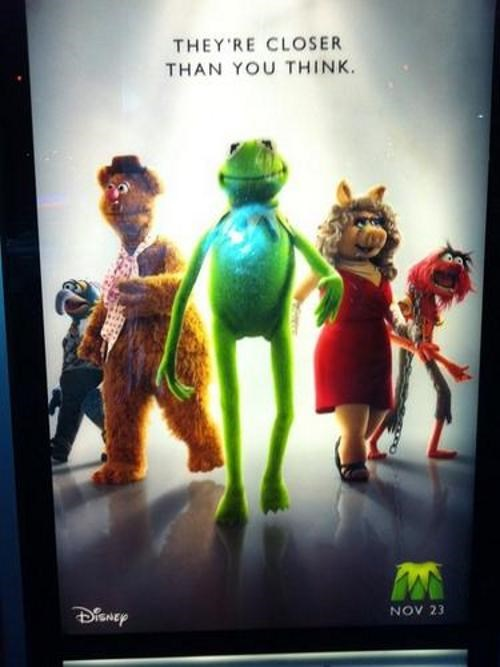 movie poster the muppets - 4758204928