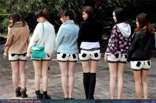 panda,shorts