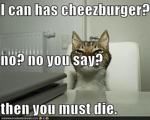 Cheezburger Image 4758279680