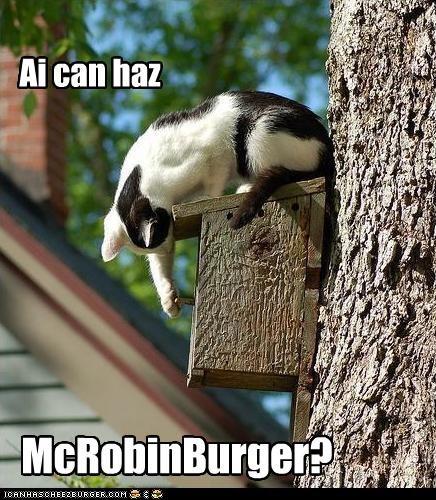 Ai can haz McRobinBurger?