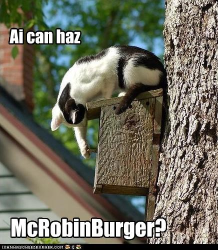 Cheezburger Image 4759607552