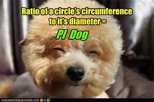 PI Dog Ratio of a circle's circumference to it's diameter =