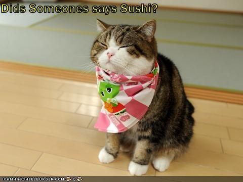 Cheezburger Image 4760697344