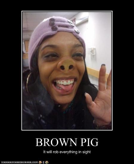 BROWN PIG It will rob everything in sight