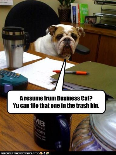 A resume frum Business Cat? Yu can file that one in the trash bin.