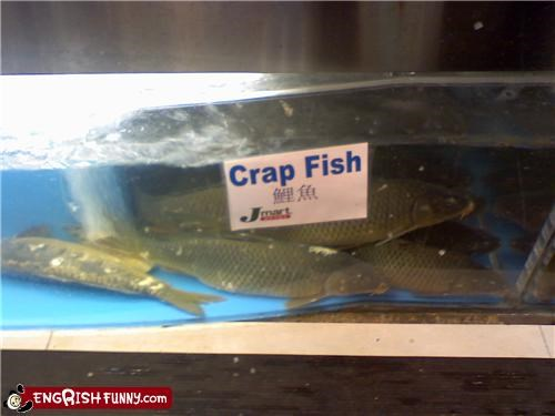 carp crap engrish fish sign - 4761928192