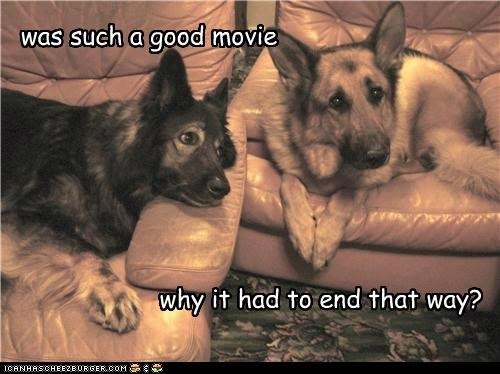 disappointed,ending,german shepherd,good,mixed breed,Movie,question,sheltie