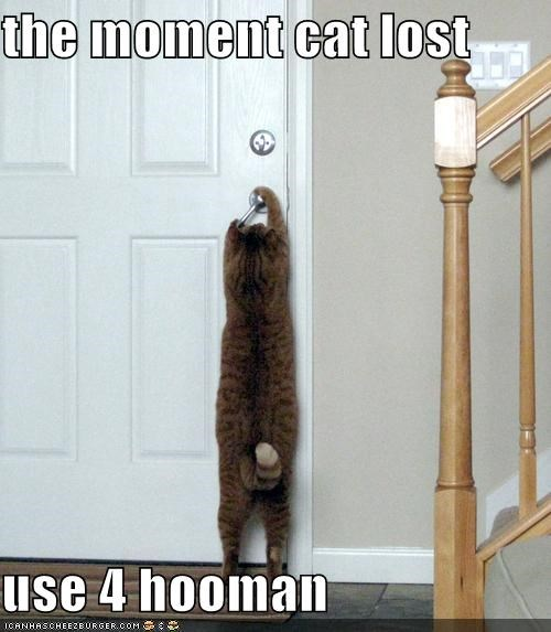 doors knobs lolcats - 476319488