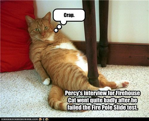 Percy's interview for Firehouse Cat went quite badly after he failed the Fire Pole Slide test. Crap.