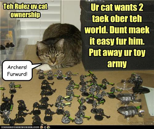 Teh Rulez uv cat ownership Ur cat wants 2 taek ober teh world. Dunt maek it easy fur him. Put away ur toy army Chech1965 150511 Archers! Furwurd!