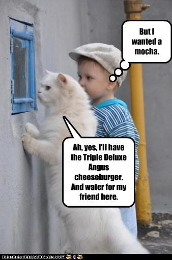 Cheezburger Image 4765064192