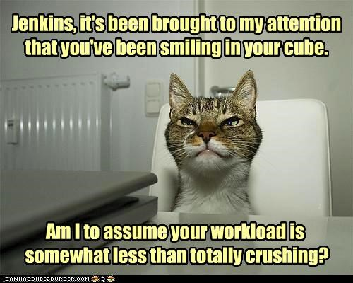 Jenkins, it's been brought to my attention that you've been smiling in your cube. Am I to assume your workload is somewhat less than totally crushing?