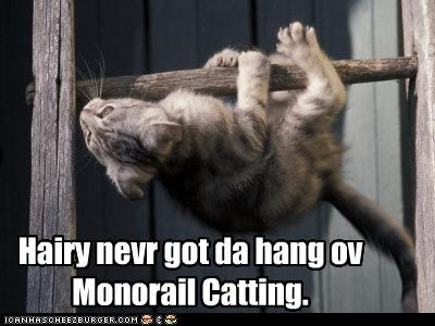 caption captioned cat doing it wrong FAIL got hang monorail monorail cat never pun - 4765521408