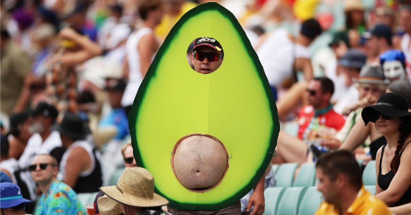 photoshop battle of avocado man