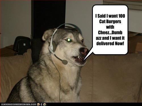 Cheezburger Image 4766430976
