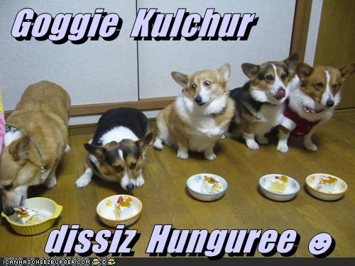 Cheezburger Image 4766595584