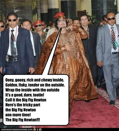 moammar gadhafi political pictures - 4767315456