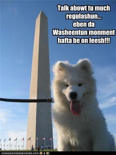 Talk abowt tu much regulashun... eben da Washeentun monment hafta be on leesh!!!