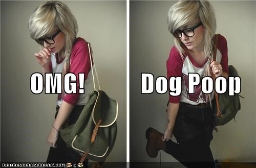 cute girl dogs hipsterlulz poop shoes wtf
