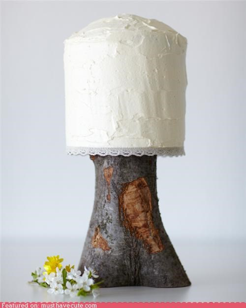 branch cake epicute frosting humble lace rustic stand stump tree white wood