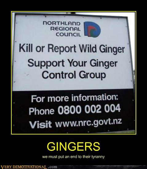 control gingers hilarious sign wild wtf