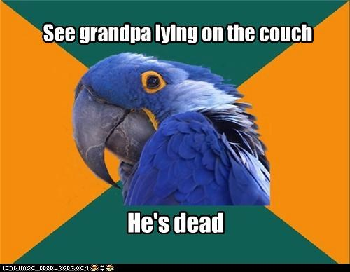 couch dead forever Grandpa nap Paranoid Parrot - 4768117504