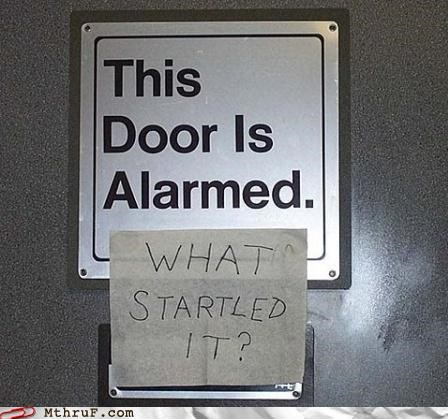 alarmed door alarms door - 4768330496