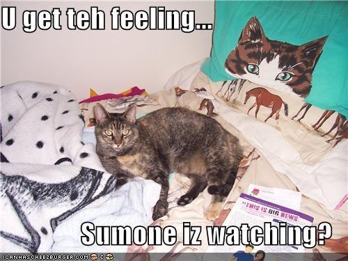 U get teh feeling...  Sumone iz watching?