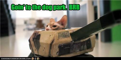 brb,caption,captioned,cat,dogs,dog park,going,park,tank