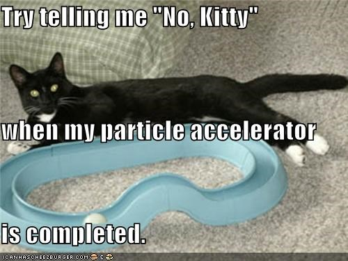 "Try telling me ""No, Kitty"" when my particle accelerator is completed."