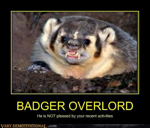 animal badger hilarious overlord scary