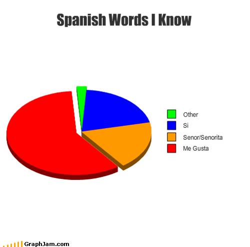 languages me gusta Pie Chart spanish - 4770217216