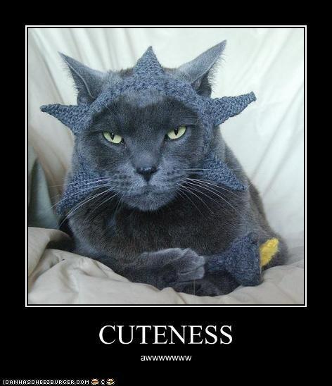 CUTENESS awwwwwww