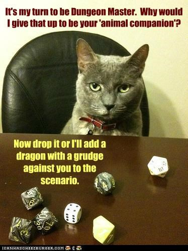 animal,campaign,caption,captioned,cat,companion,dragon,dungeon master,dungeons and dragons,grudge,indignant,offended,offer,scenario,threat,upset