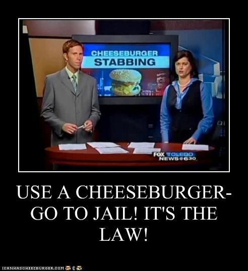 Cheezburger Image 4772165888