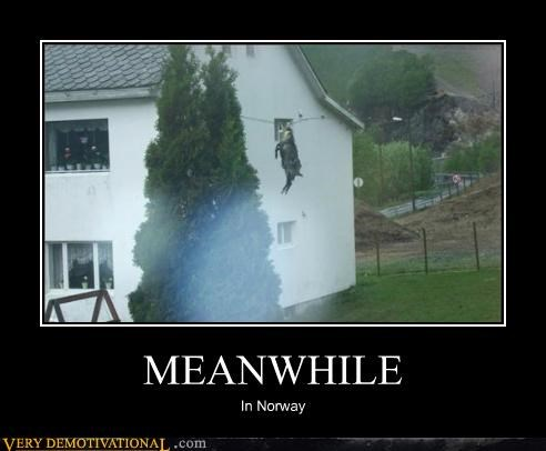 awesome,goat,hilarious,Meanwhile,Norway