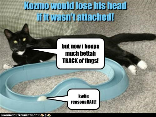 Kozmo would lose his head if it wasn't attached! but now i keeps much bettah TRACK of fings! kwite reasonaBALL!