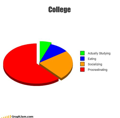 college life Pie Chart procrastinating - 4773611008
