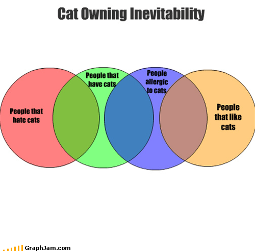 People that have cats People allergic to cats Cat Owning Inevitability People that like cats People that hate cats