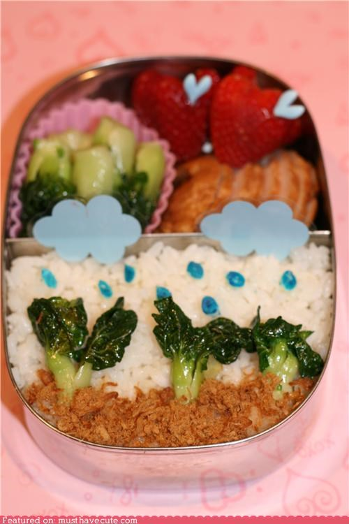 bento clouds epicute lunch rain rice strawberries veggies